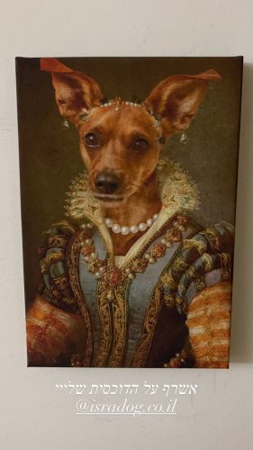 תמונת קנבס - הכלבה הנסיכה (קנבס בעיצוב אישי עם תמונה של הכלבה שלכם) photo review
